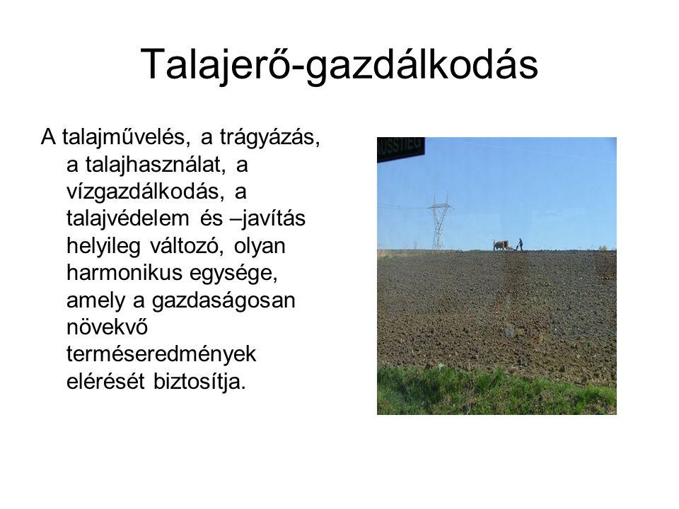 Talajerő-gazdálkodás A talajművelés, a trágyázás, a talajhasználat, a vízgazdálkodás, a talajvédelem és –javítás helyileg változó, olyan harmonikus eg