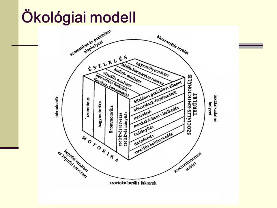 Ökológiai modell