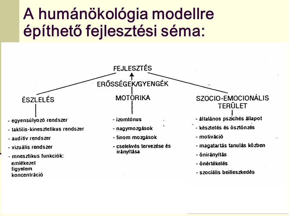 A humánökológia modellre építhető fejlesztési séma: