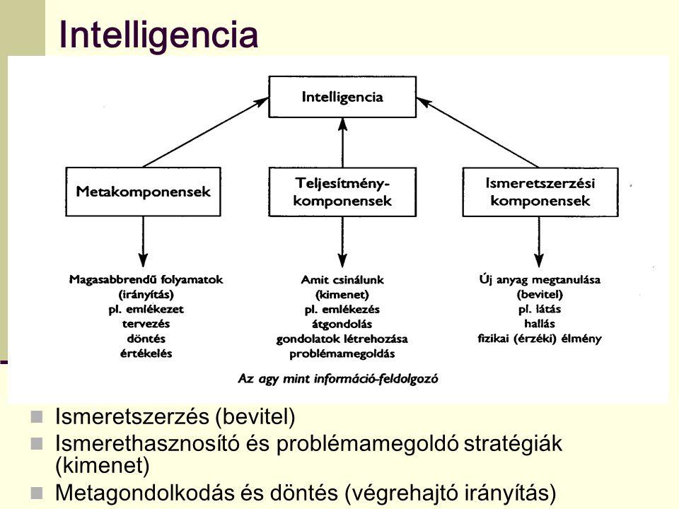 Intelligencia Ismeretszerzés (bevitel) Ismerethasznosító és problémamegoldó stratégiák (kimenet) Metagondolkodás és döntés (végrehajtó irányítás)