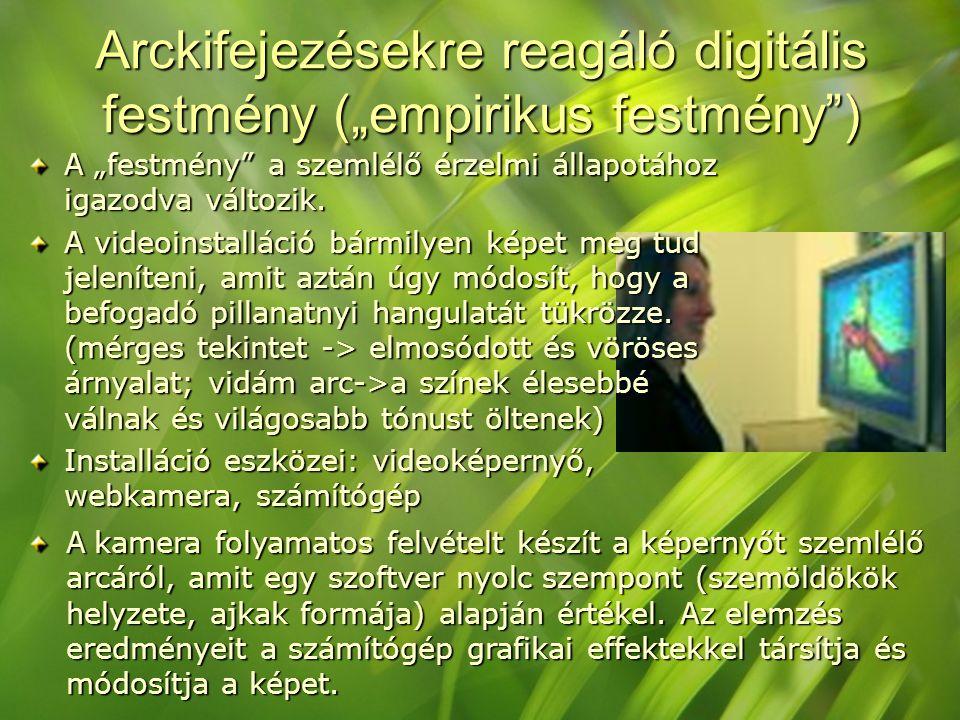 """Arckifejezésekre reagáló digitális festmény (""""empirikus festmény"""") A """"festmény"""" a szemlélő érzelmi állapotához igazodva változik. A videoinstalláció b"""
