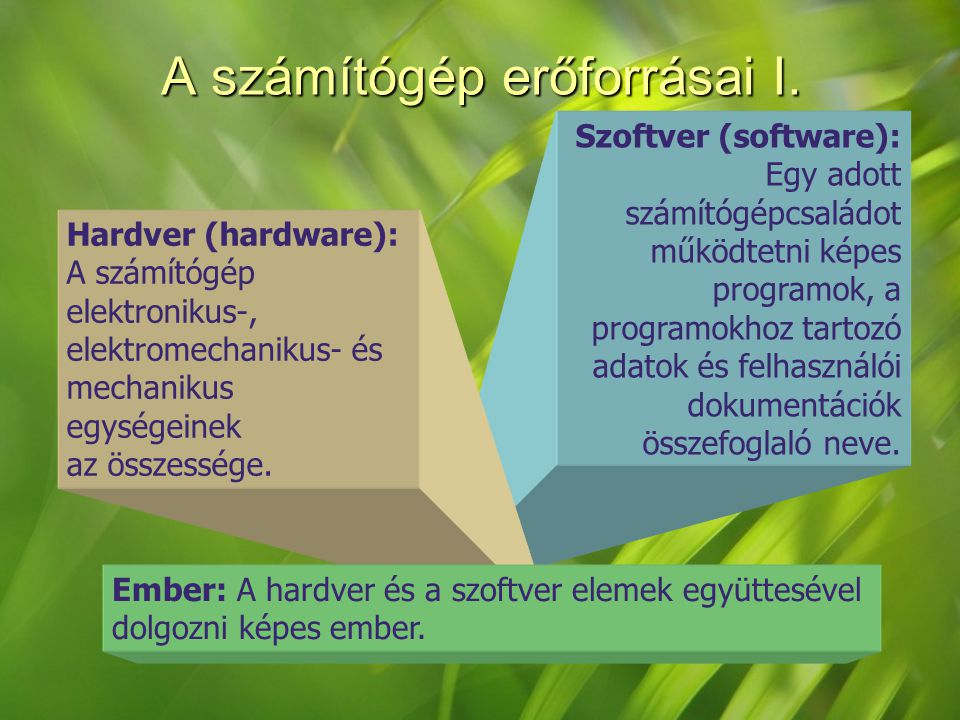 Szoftver (software): Egy adott számítógépcsaládot működtetni képes programok, a programokhoz tartozó adatok és felhasználói dokumentációk összefoglaló