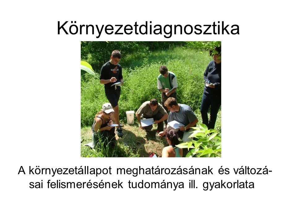 Környezetdiagnosztika A környezetállapot meghatározásának és változá- sai felismerésének tudománya ill. gyakorlata