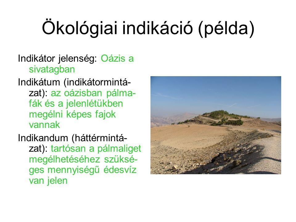 Ökológiai indikáció (példa) Indikátor jelenség: Oázis a sivatagban Indikátum (indikátormintá- zat): az oázisban pálma- fák és a jelenlétükben megélni