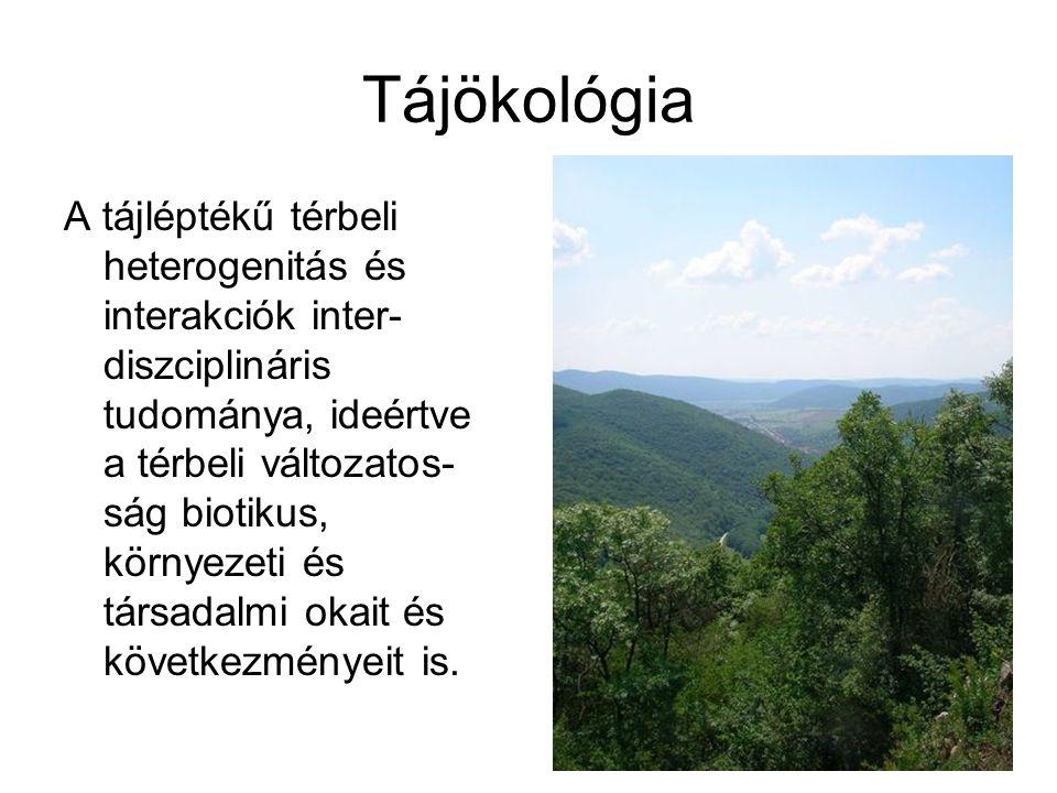 Tájökológia A tájléptékű térbeli heterogenitás és interakciók inter- diszciplináris tudománya, ideértve a térbeli változatos- ság biotikus, környezeti
