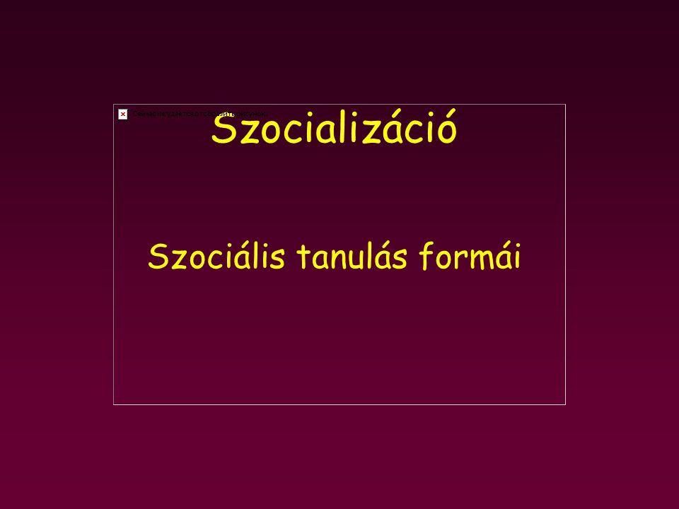 Szocializáció Szociális tanulás formái
