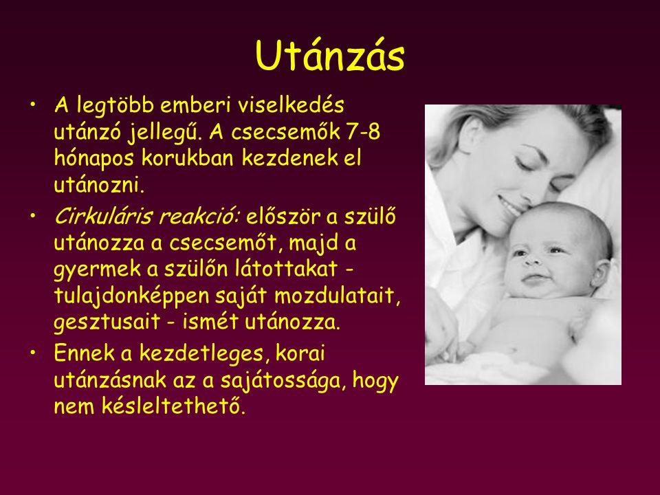 Utánzás A legtöbb emberi viselkedés utánzó jellegű. A csecsemők 7-8 hónapos korukban kezdenek el utánozni. Cirkuláris reakció: először a szülő utánozz