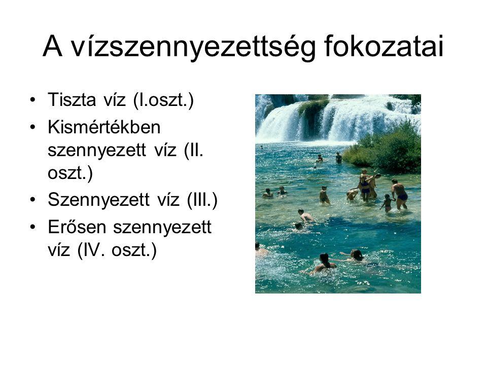A vízszennyezettség fokozatai Tiszta víz (I.oszt.) Kismértékben szennyezett víz (II. oszt.) Szennyezett víz (III.) Erősen szennyezett víz (IV. oszt.)