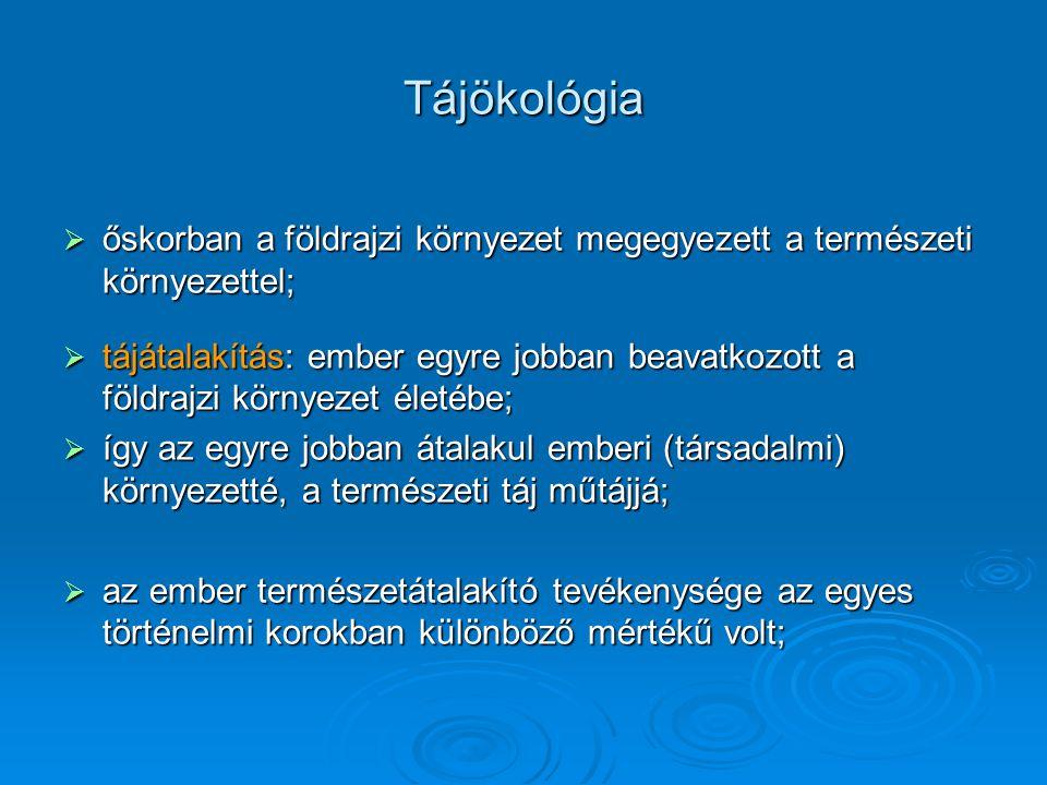 településtípusok  Magyarországon 2005-ben 3145 közigazgatási egység volt,  közülük 274 rendelkezett városi jogállással (2007.