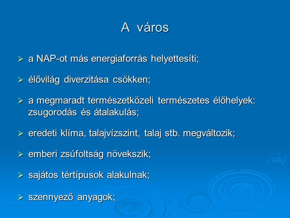 A város  a NAP-ot más energiaforrás helyettesíti;  élővilág diverzitása csökken;  a megmaradt természetközeli természetes élőhelyek: zsugorodás és