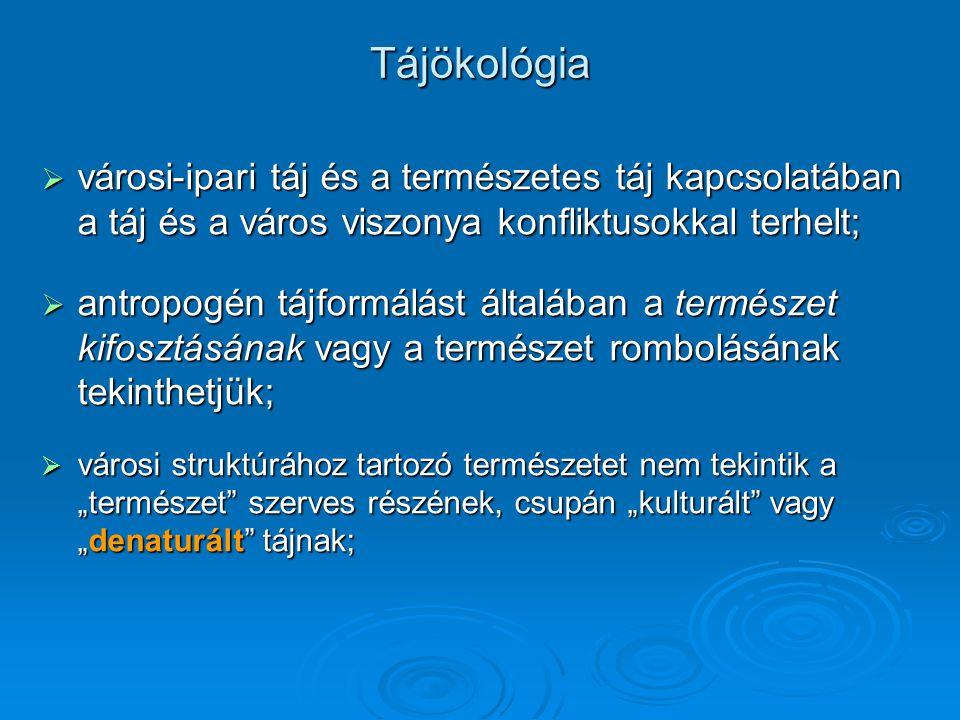 A magyar városhálózat évszázados átrendeződése A legfontosabb megállapítások: A XX.