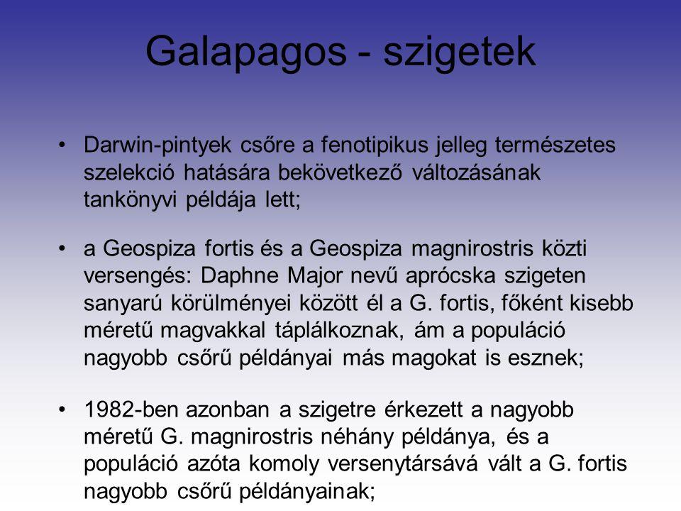 Galapagos - szigetek Darwin-pintyek csőre a fenotipikus jelleg természetes szelekció hatására bekövetkező változásának tankönyvi példája lett; a Geosp