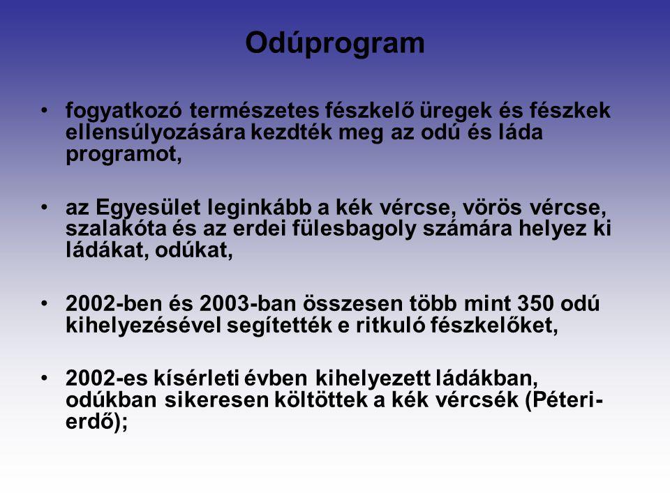 Odúprogram fogyatkozó természetes fészkelő üregek és fészkek ellensúlyozására kezdték meg az odú és láda programot, az Egyesület leginkább a kék vércs