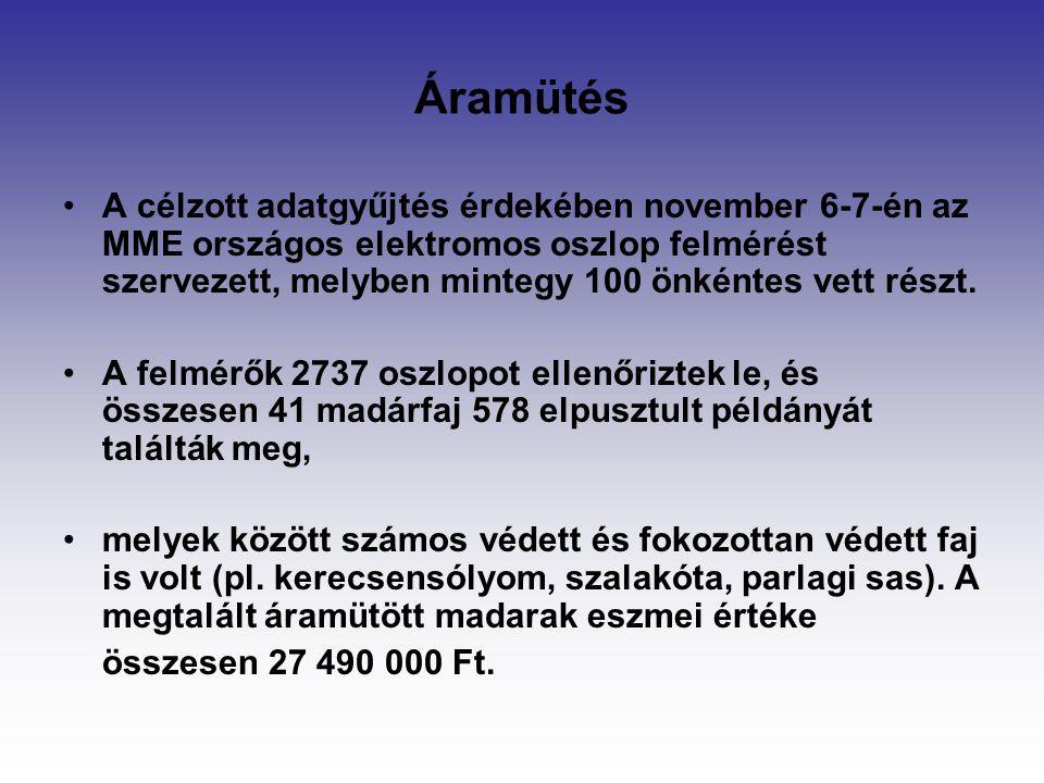 Áramütés A célzott adatgyűjtés érdekében november 6-7-én az MME országos elektromos oszlop felmérést szervezett, melyben mintegy 100 önkéntes vett rés