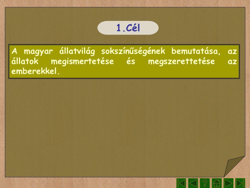Irodalom www.wikipedia.org Segítségével kerestem a szöveget www.google.hu Segítségével kerestem képeket