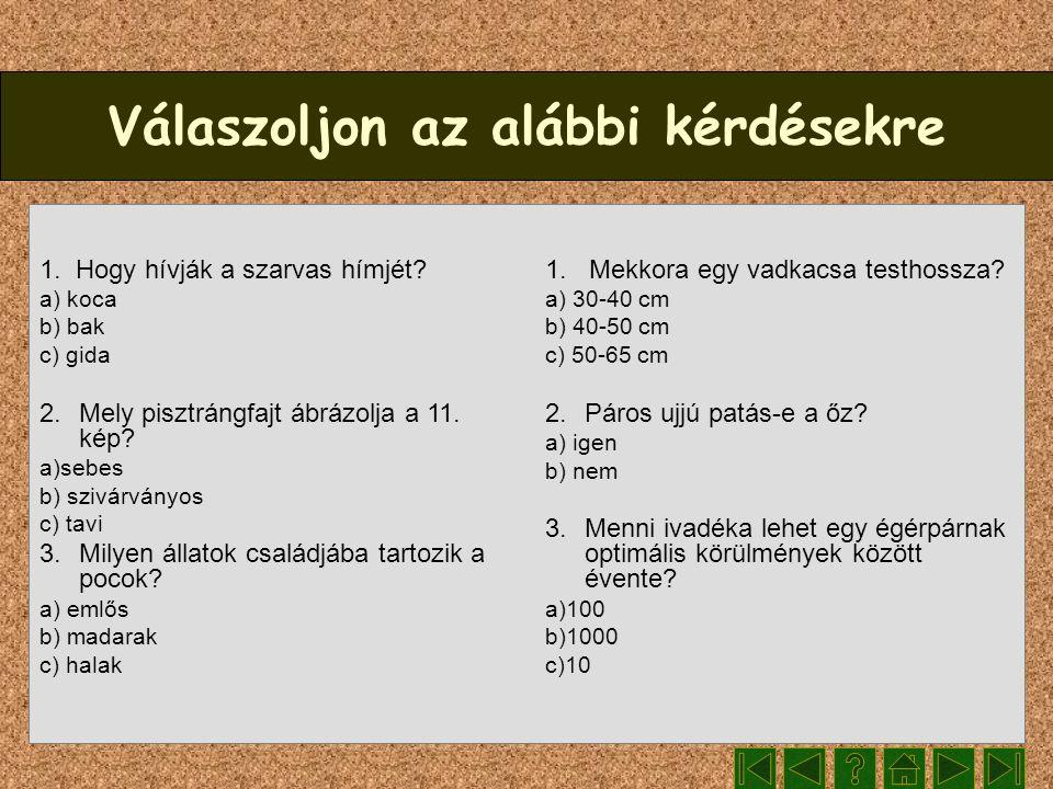Válaszoljon az alábbi kérdésekre 1. Hogy hívják a szarvas hímjét? a) koca b) bak c) gida 2. Mely pisztrángfajt ábrázolja a 11. kép? a)sebes b) szivárv