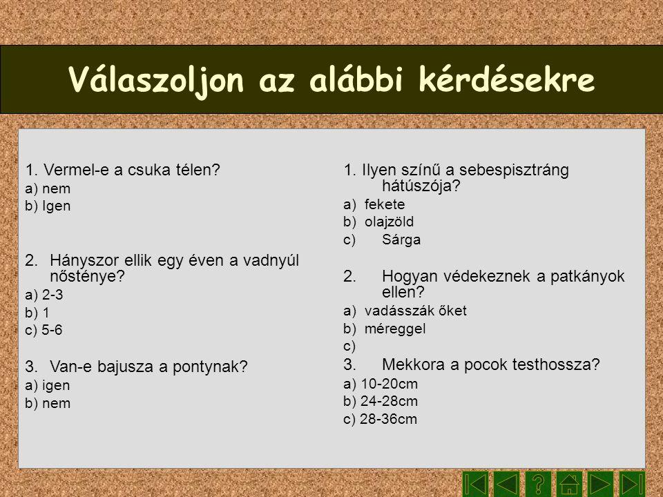 Válaszoljon az alábbi kérdésekre 1. Vermel-e a csuka télen? a) nem b) Igen 2. Hányszor ellik egy éven a vadnyúl nősténye? a) 2-3 b) 1 c) 5-6 3.Van-e b