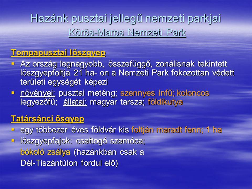 Hazánk pusztai jellegű nemzeti parkjai Körös-Maros Nemzeti Park Tompapusztai löszgyep  Az ország legnagyobb, összefüggő, zonálisnak tekintett löszgye