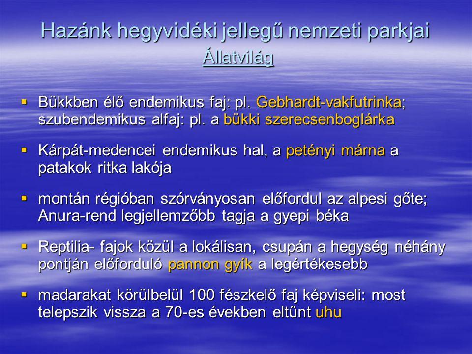 Hazánk hegyvidéki jellegű nemzeti parkjai Állatvilág  Bükkben élő endemikus faj: pl. Gebhardt-vakfutrinka; szubendemikus alfaj: pl. a bükki szerecsen