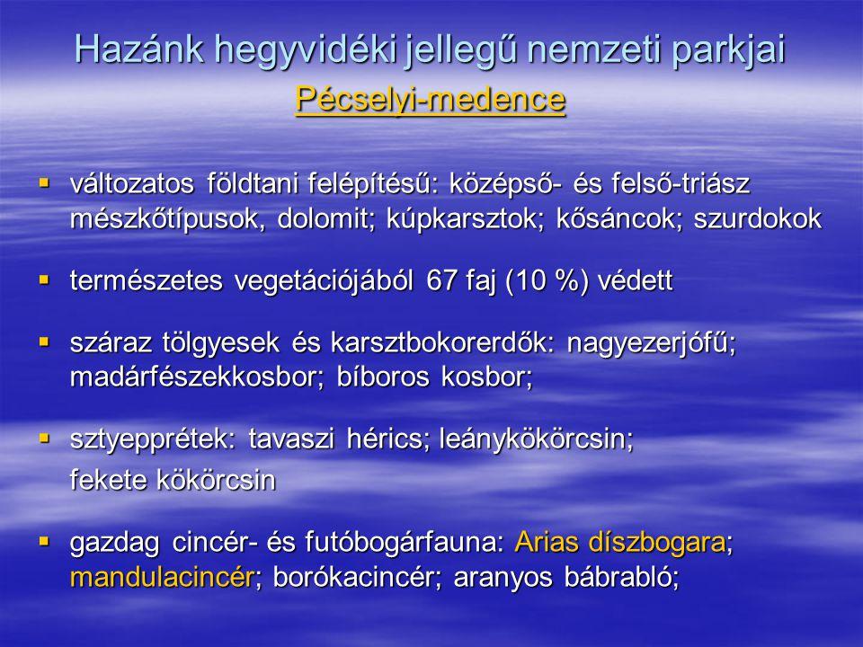 Hazánk hegyvidéki jellegű nemzeti parkjai Pécselyi-medence  változatos földtani felépítésű: középső- és felső-triász mészkőtípusok, dolomit; kúpkarsz