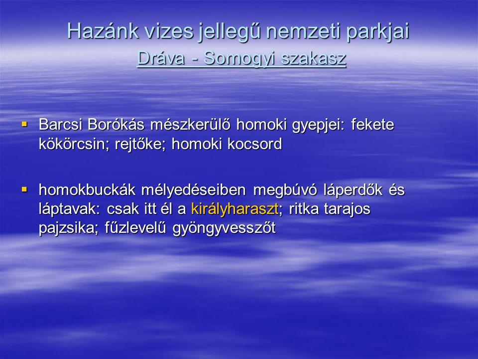 Hazánk vizes jellegű nemzeti parkjai Dráva - Somogyi szakasz  Barcsi Borókás mészkerülő homoki gyepjei: fekete kökörcsin; rejtőke; homoki kocsord  h