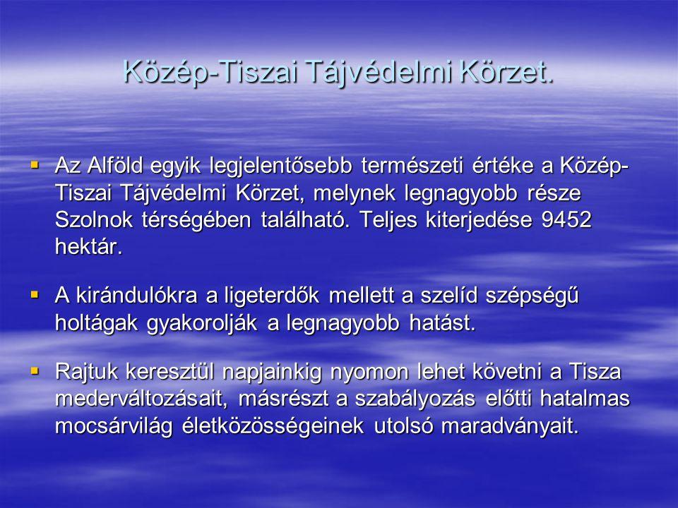Közép-Tiszai Tájvédelmi Körzet.  Az Alföld egyik legjelentősebb természeti értéke a Közép- Tiszai Tájvédelmi Körzet, melynek legnagyobb része Szolnok