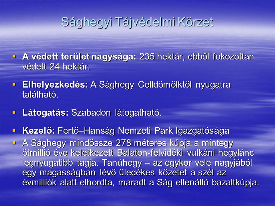 Sághegyi Tájvédelmi Körzet  A védett terület nagysága: 235 hektár, ebből fokozottan védett 24 hektár.  Elhelyezkedés: A Sághegy Celldömölktől nyugat