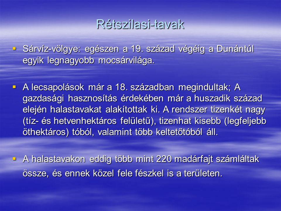 Rétszilasi-tavak  Sárvíz-völgye: egészen a 19. század végéig a Dunántúl egyik legnagyobb mocsárvilága.  A lecsapolások már a 18. században megindult