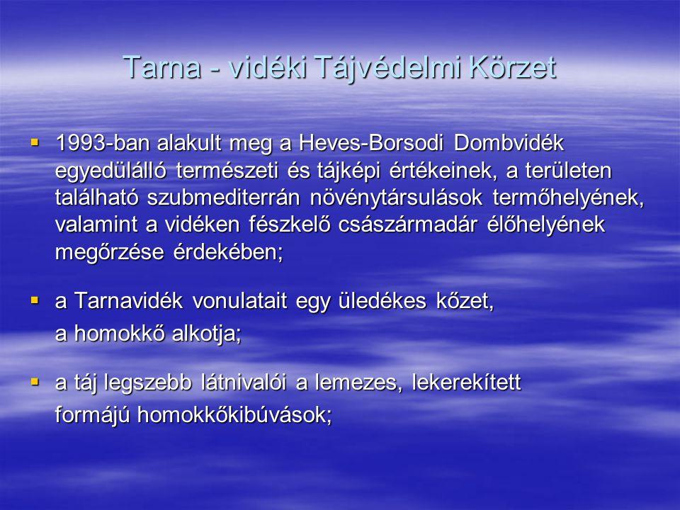 Tarna - vidéki Tájvédelmi Körzet  1993-ban alakult meg a Heves-Borsodi Dombvidék egyedülálló természeti és tájképi értékeinek, a területen található