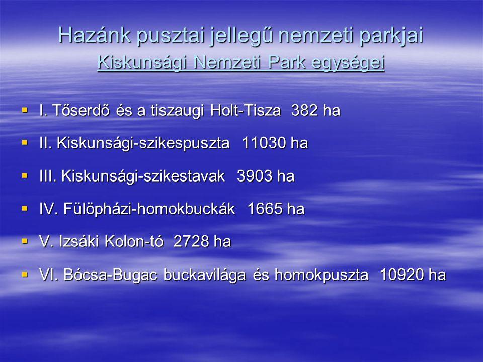 Hazánk pusztai jellegű nemzeti parkjai Kiskunsági Nemzeti Park egységei  I. Tőserdő és a tiszaugi Holt-Tisza 382 ha  II. Kiskunsági-szikespuszta 110