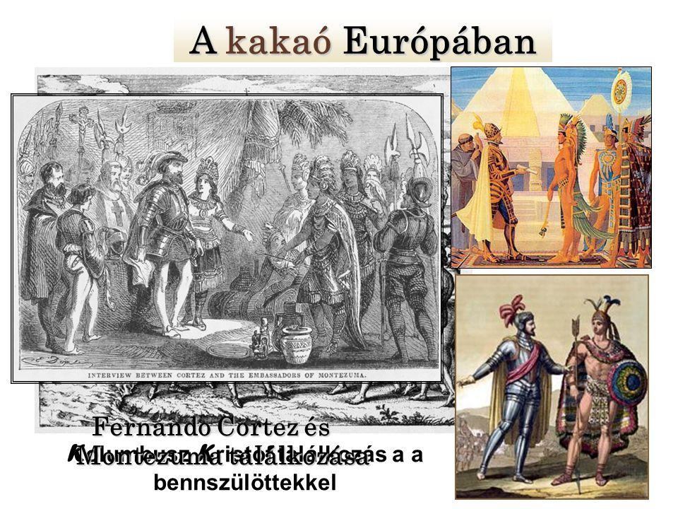 K olumbusz K ristóf találkozás a a bennszülöttekkel A kakaó Európában Fernando Cortez és Montezuma találkozása