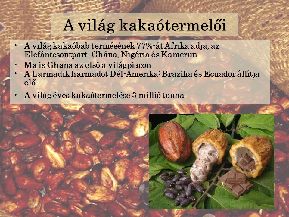 A világ kakaóbab termésének 77%-át Afrika adja, az Elefántcsontpart, Ghána, Nigéria és Kamerun Ma is Ghana az elsô a világpiacon A harmadik harmadot Dél-Amerika: Brazília és Ecuador állítja elő A világ éves kakaótermelése 3 millió tonna A világ kakaótermelői
