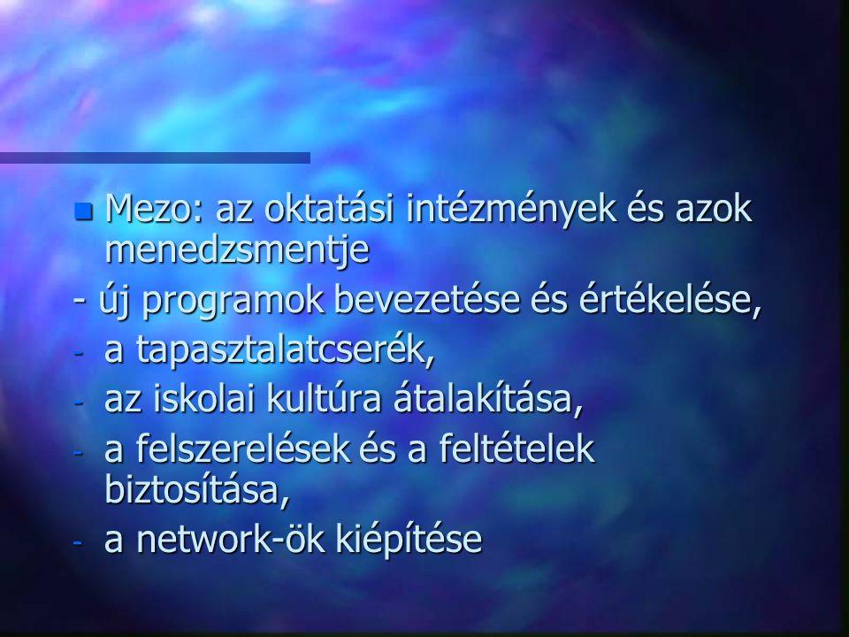 n Mezo: az oktatási intézmények és azok menedzsmentje - új programok bevezetése és értékelése, - a tapasztalatcserék, - az iskolai kultúra átalakítása, - a felszerelések és a feltételek biztosítása, - a network-ök kiépítése