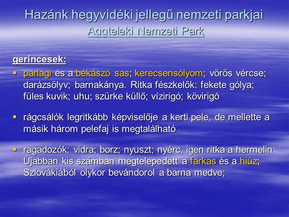 Hazánk hegyvidéki jellegű nemzeti parkjai Aggteleki Nemzeti Park gerincesek:  parlagi és a békászó sas; kerecsensólyom; vörös vércse; darázsölyv; bar