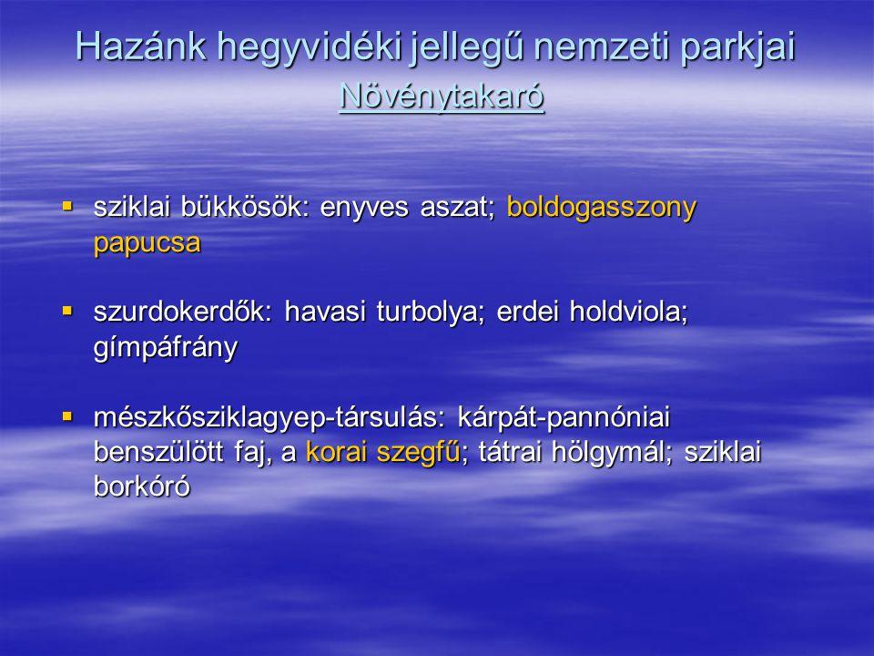 Hazánk hegyvidéki jellegű nemzeti parkjai Növénytakaró  sziklai bükkösök: enyves aszat; boldogasszony papucsa  szurdokerdők: havasi turbolya; erdei
