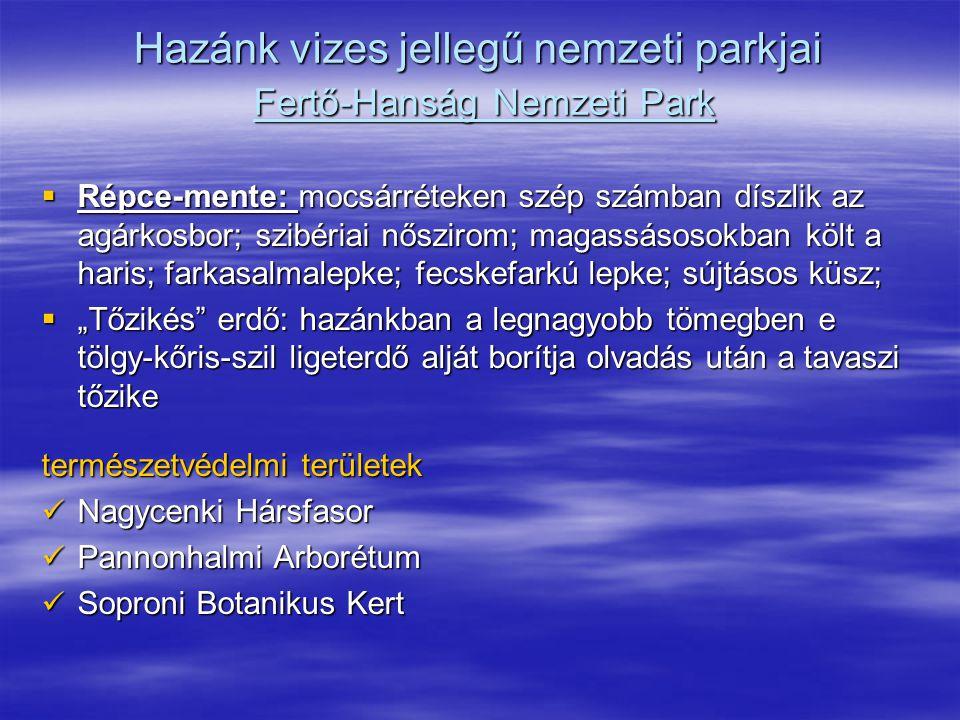 Hazánk vizes jellegű nemzeti parkjai Fertő-Hanság Nemzeti Park  Répce-mente: mocsárréteken szép számban díszlik az agárkosbor; szibériai nőszirom; ma