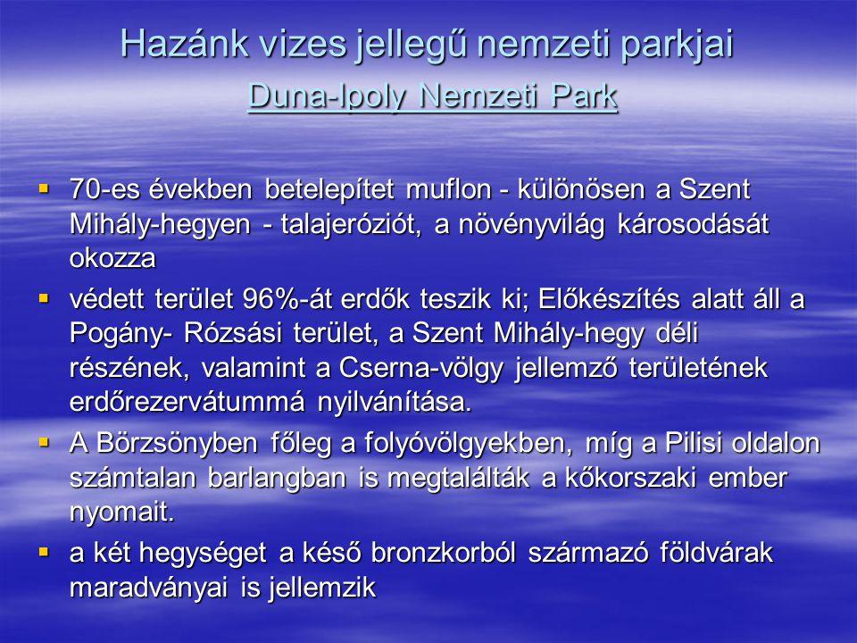 Hazánk vizes jellegű nemzeti parkjai Duna-Ipoly Nemzeti Park  70-es években betelepítet muflon - különösen a Szent Mihály-hegyen - talajeróziót, a nö