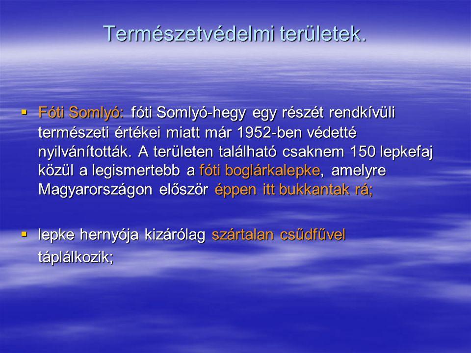 Természetvédelmi területek.  Fóti Somlyó: fóti Somlyó-hegy egy részét rendkívüli természeti értékei miatt már 1952-ben védetté nyilvánították. A terü