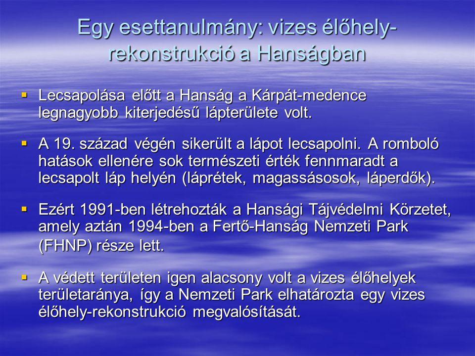 Egy esettanulmány: vizes élőhely- rekonstrukció a Hanságban  Lecsapolása előtt a Hanság a Kárpát-medence legnagyobb kiterjedésű lápterülete volt.  A