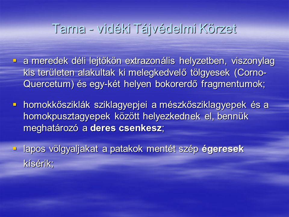 Tarna - vidéki Tájvédelmi Körzet  a meredek déli lejtőkön extrazonális helyzetben, viszonylag kis területen alakultak ki melegkedvelő tölgyesek (Corn