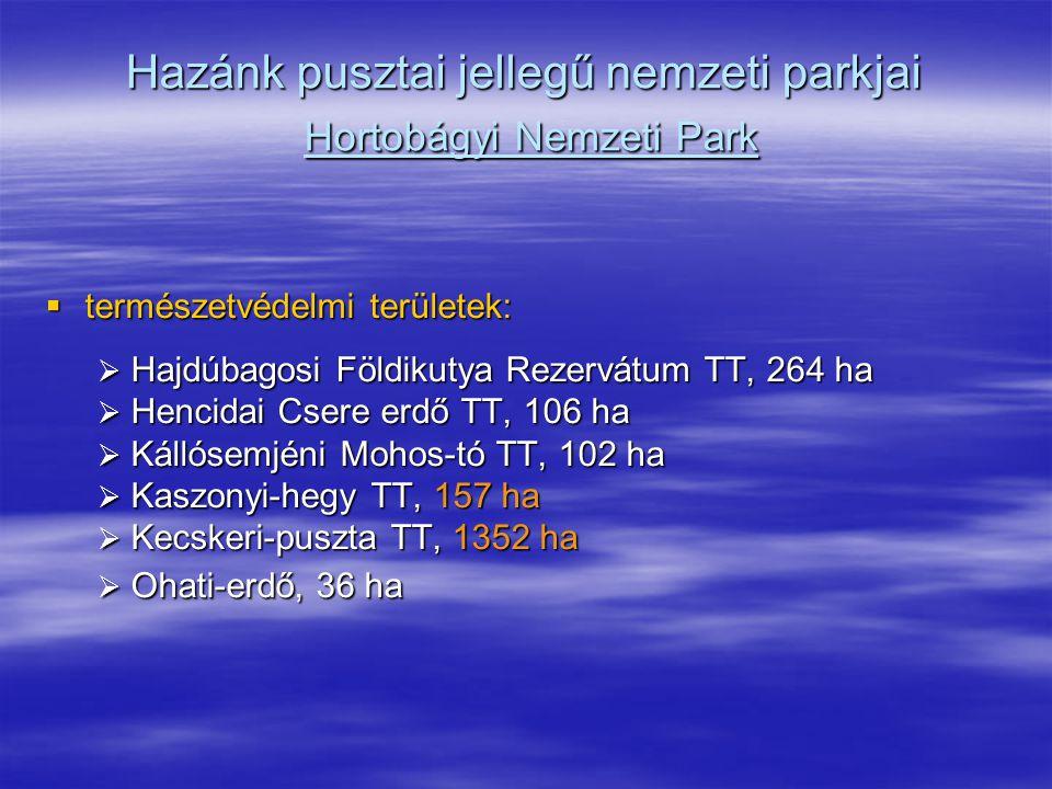 Hazánk pusztai jellegű nemzeti parkjai Hortobágyi Nemzeti Park  természetvédelmi területek:  Hajdúbagosi Földikutya Rezervátum TT, 264 ha  Hencidai
