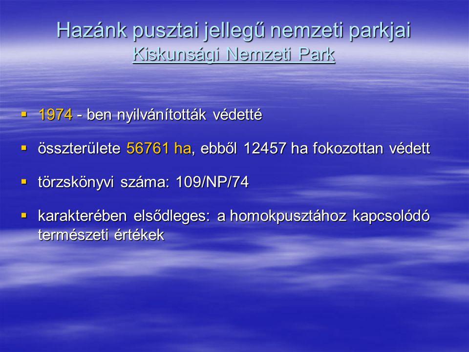 Hazánk pusztai jellegű nemzeti parkjai Kiskunsági Nemzeti Park  1974 - ben nyilvánították védetté  összterülete 56761 ha, ebből 12457 ha fokozottan