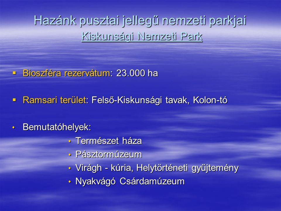 Hazánk pusztai jellegű nemzeti parkjai Kiskunsági Nemzeti Park  Bioszféra rezervátum: 23.000 ha  Ramsari terület: Felső-Kiskunsági tavak, Kolon-tó B