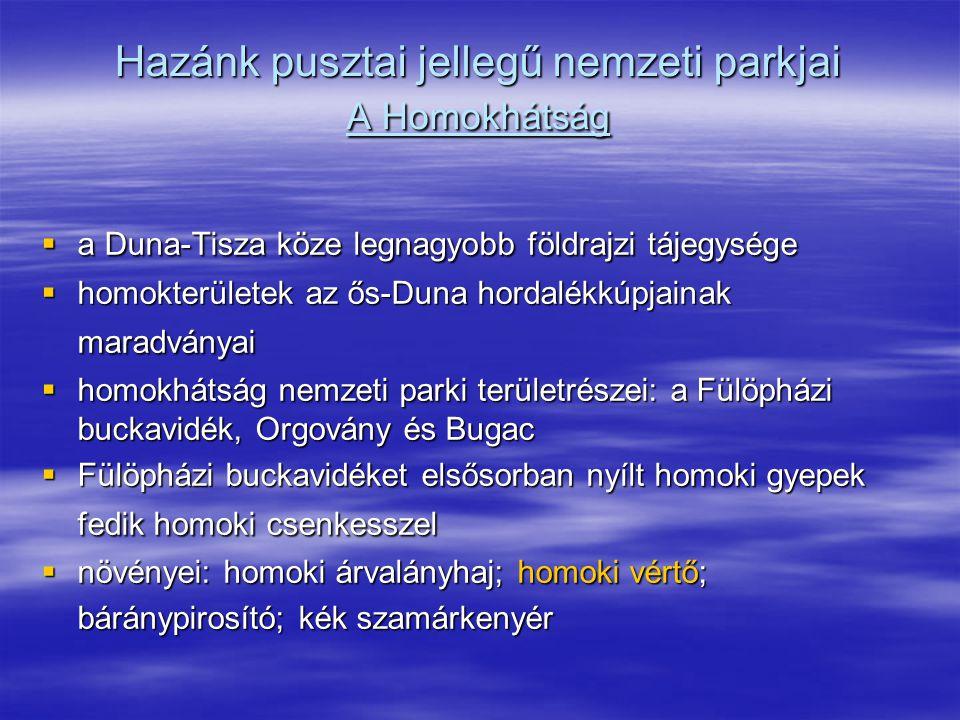 Hazánk pusztai jellegű nemzeti parkjai A Homokhátság  a Duna-Tisza köze legnagyobb földrajzi tájegysége  homokterületek az ős-Duna hordalékkúpjainak