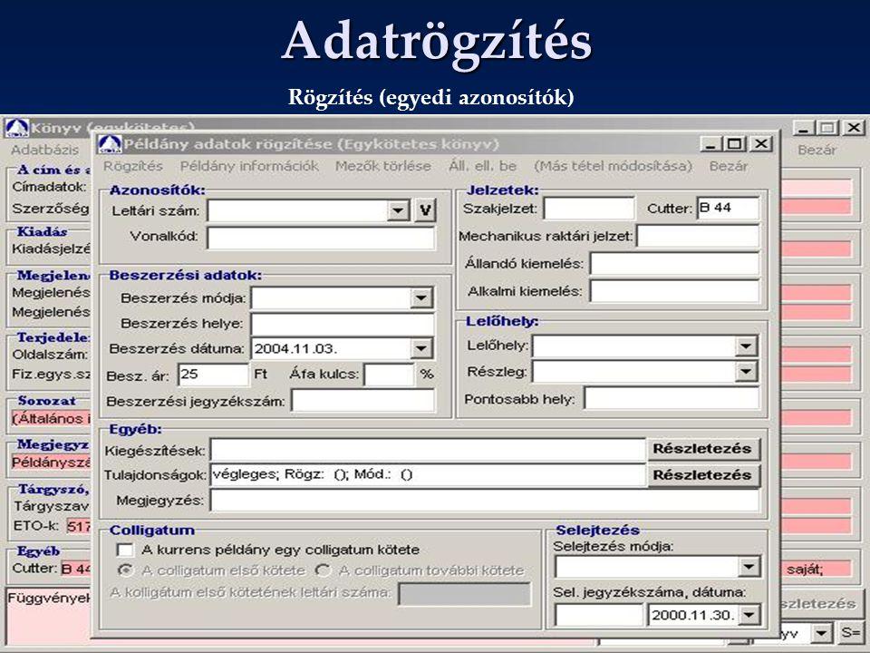 Adatrögzítés Rögzítés (egyedi azonosítók)