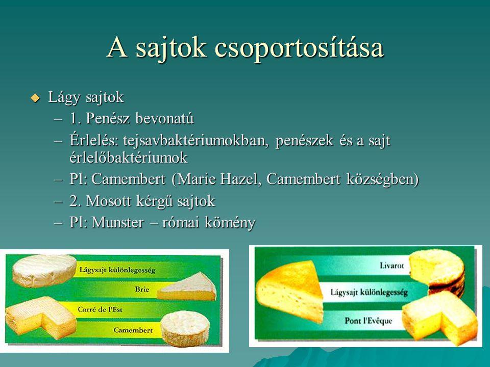 A sajtok csoportosítása  Lágy sajtok –1. Penész bevonatú –Érlelés: tejsavbaktériumokban, penészek és a sajt érlelőbaktériumok –Pl: Camembert (Marie H