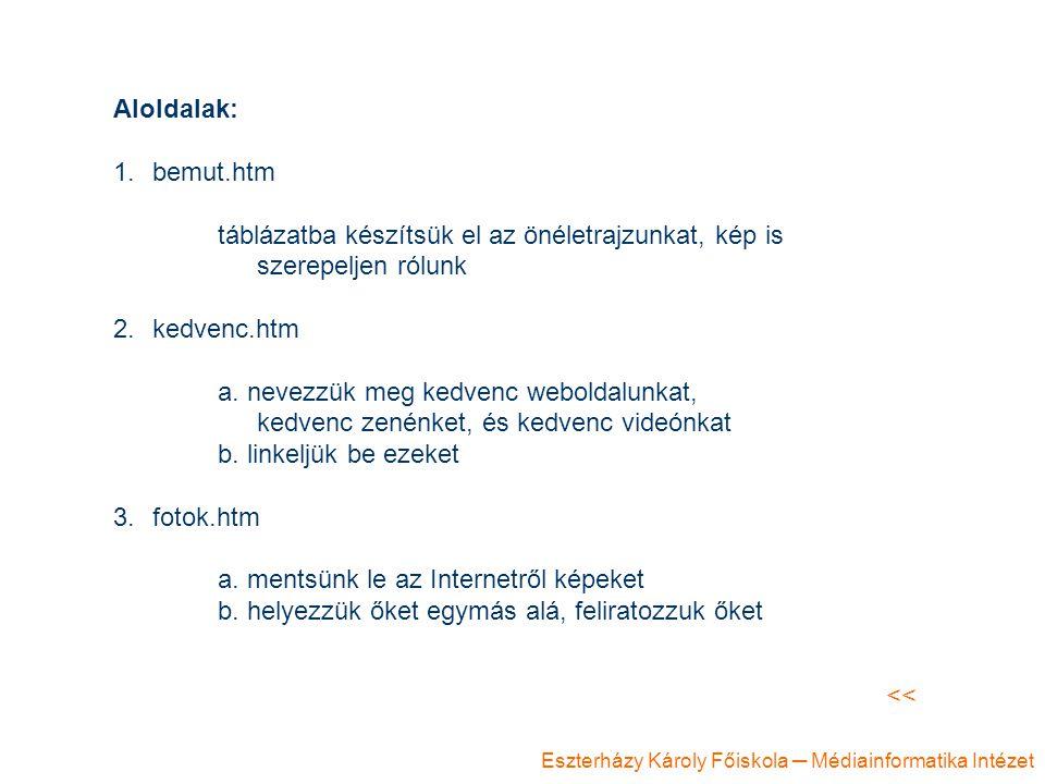 Eszterházy Károly Főiskola ─ Médiainformatika Intézet Aloldalak: 1.bemut.htm táblázatba készítsük el az önéletrajzunkat, kép is szerepeljen rólunk 2.kedvenc.htm a.