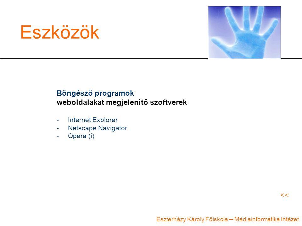 Eszterházy Károly Főiskola ─ Médiainformatika Intézet Eszközök Böngésző programok weboldalakat megjelenítő szoftverek -Internet Explorer -Netscape Nav