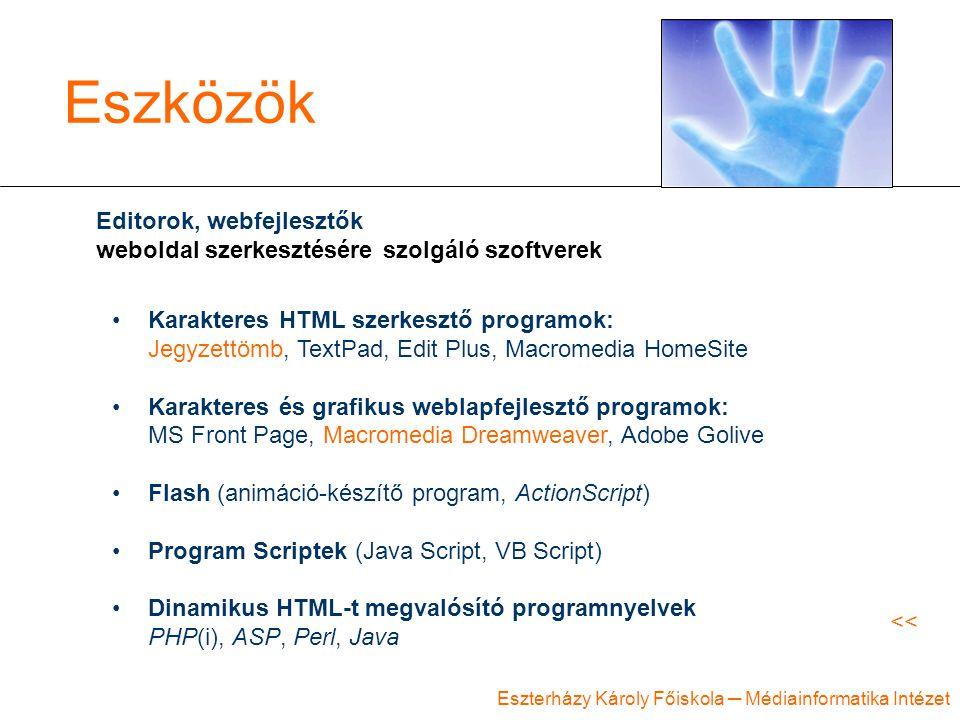 Eszterházy Károly Főiskola ─ Médiainformatika Intézet Eszközök Editorok, webfejlesztők weboldal szerkesztésére szolgáló szoftverek Karakteres HTML szerkesztő programok: Jegyzettömb, TextPad, Edit Plus, Macromedia HomeSite Karakteres és grafikus weblapfejlesztő programok: MS Front Page, Macromedia Dreamweaver, Adobe Golive Flash (animáció-készítő program, ActionScript) Program Scriptek (Java Script, VB Script) Dinamikus HTML-t megvalósító programnyelvek PHP(i), ASP, Perl, Java <<
