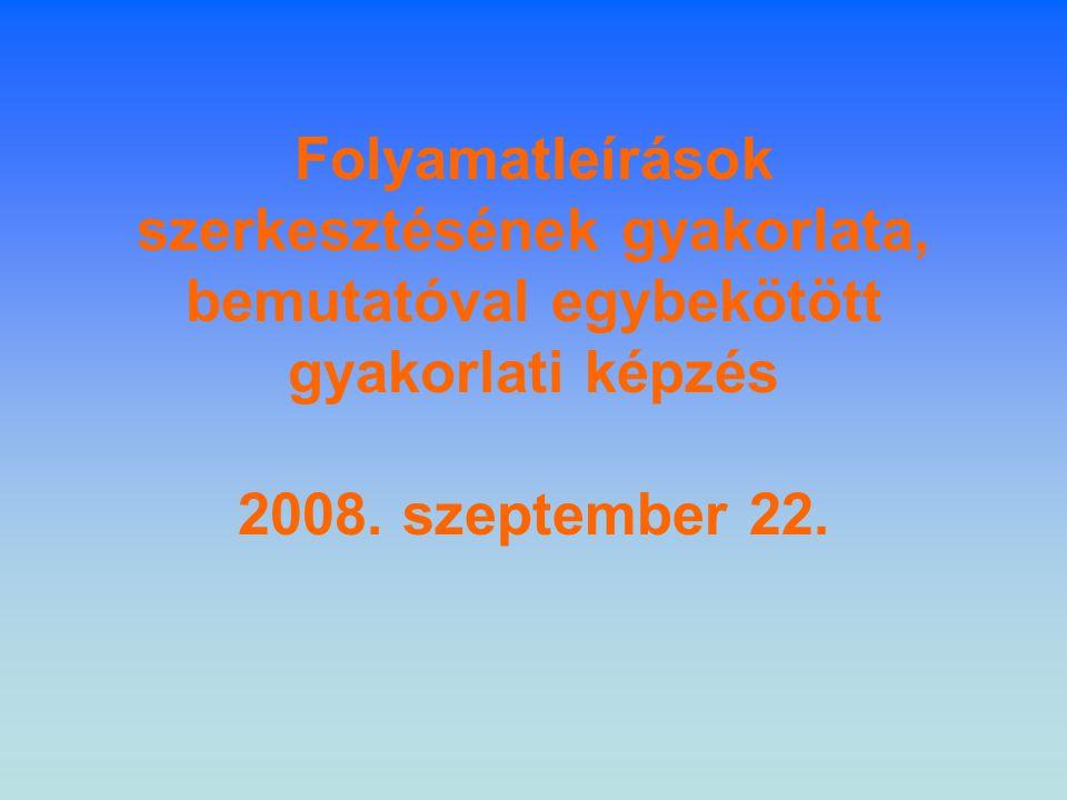 Folyamatleírások szerkesztésének gyakorlata, bemutatóval egybekötött gyakorlati képzés 2008.